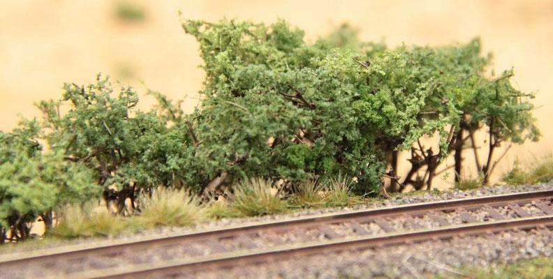 14.08.2012   Gleistrasse über dem Bahndammdurchlaß