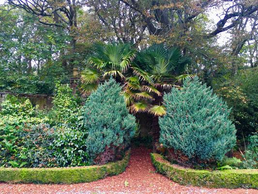 So bietet sich der Zugang zur alten Gärtnerei dar