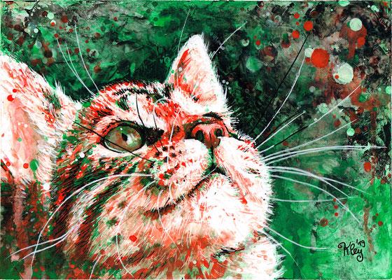 """""""orange-grüne Katze"""" Acryl auf Spezialpapier A4"""