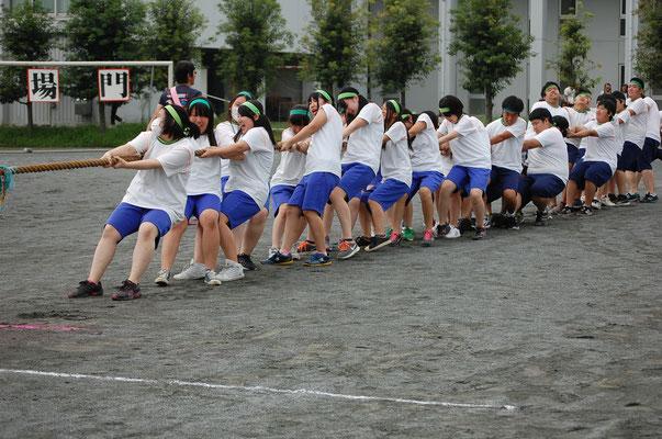 体育祭 <綱引き>