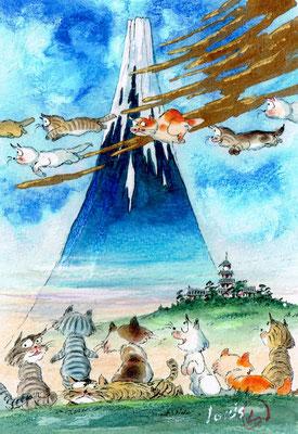 富士山好きの猫達