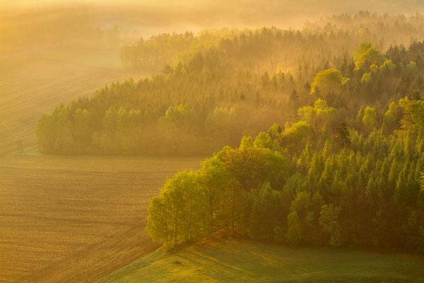 Pfaffenstein, Germany, ©2014