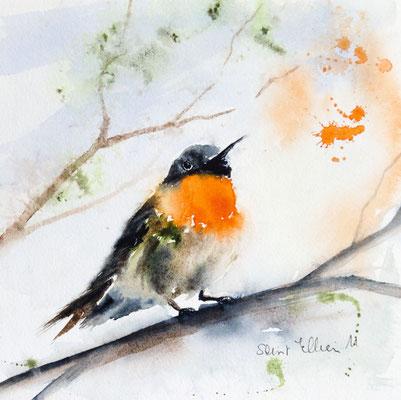 aquarelle d'oiseau