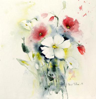 Aquarelle de fleurs blanches et rouges par Martine SAINT ELLIER