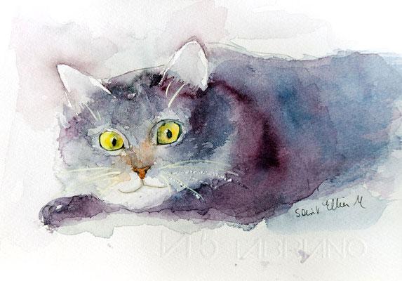 smiling cat watercolor
