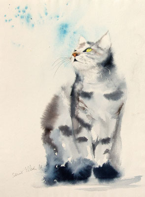 Aquarelle de chat