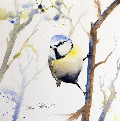 Titmouse watercolor painting