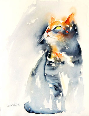 Aquarelle de chat qui regarde en l'air - 28 x 38 cm