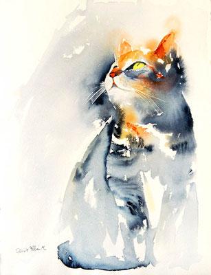 Aquarelle de chat qui regarde en l'air - 28 x 38 cm