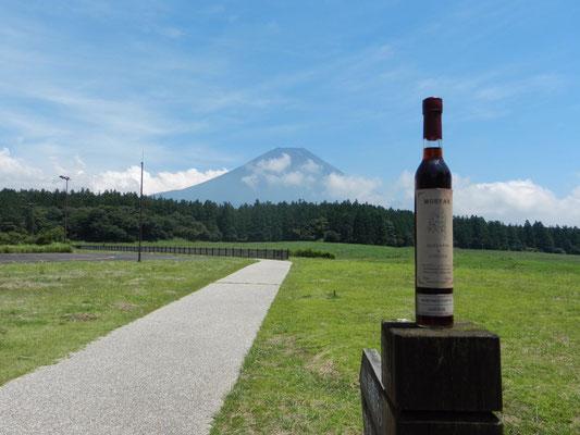 Japan. Fuji mountain