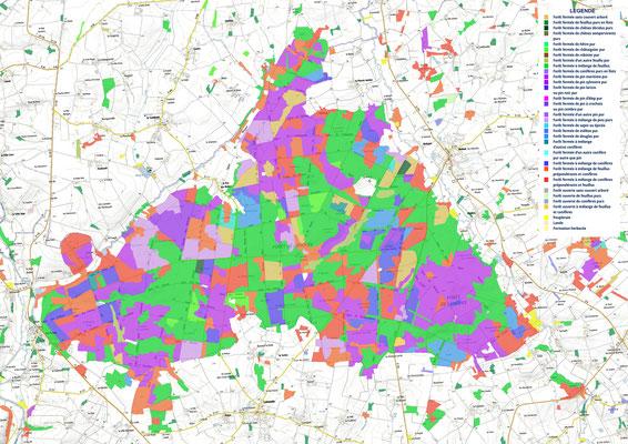 répartition des essences sur le massif forestier (zones protégées : en vert)