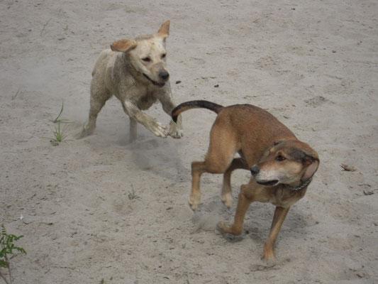 a giocare con la sua migliore amica