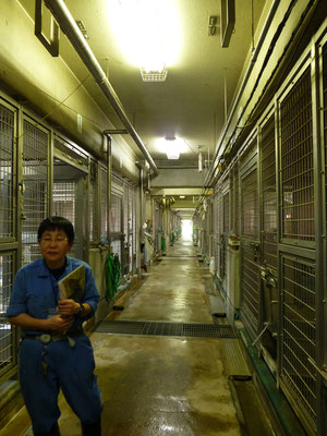 動物飼育舎内