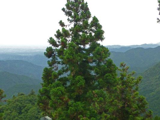 御嶽山からの眺望