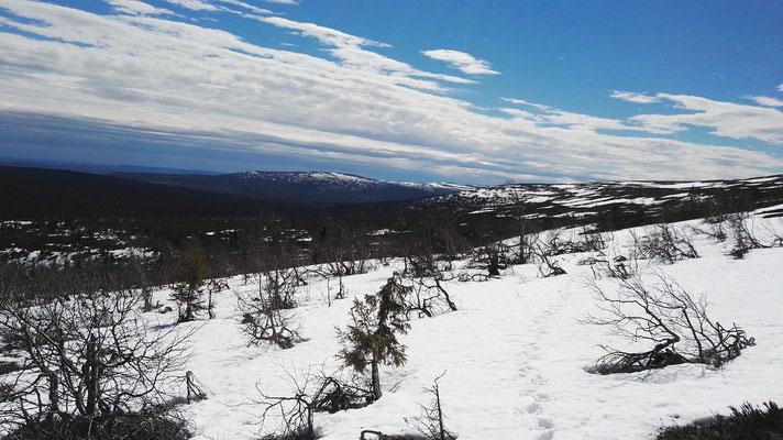 Aufwärts durch den Schnee...