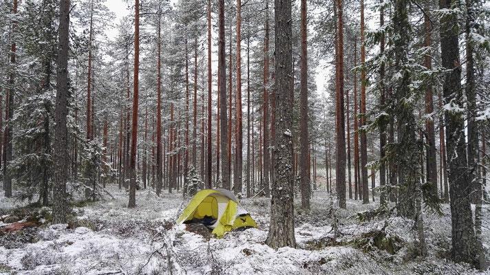 Morgens erwache ich im Schnee