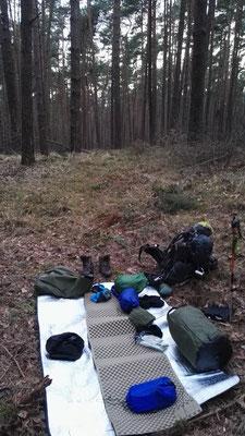 Mein erstes Nachtlager mitten im Kiefernwald kurz hinter Berlin