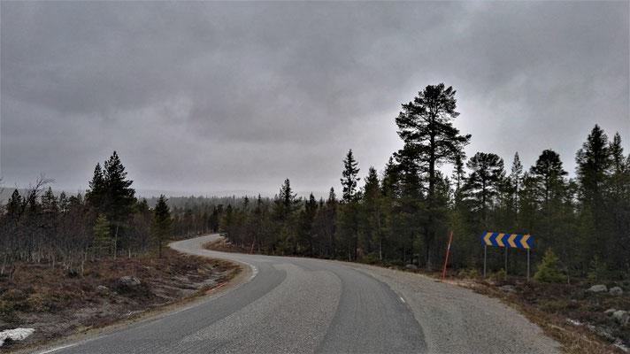 Reichlich Wald und etwa ein Auto pro Stunde