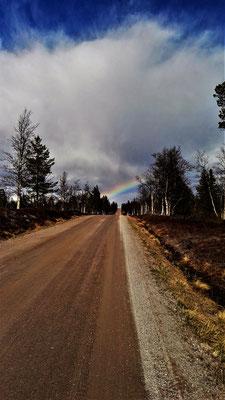 Jämtland begrüßt mich mit einem herrlichen Regenbogen
