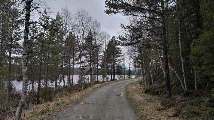 Auf dem Weg nach Funäsdalen