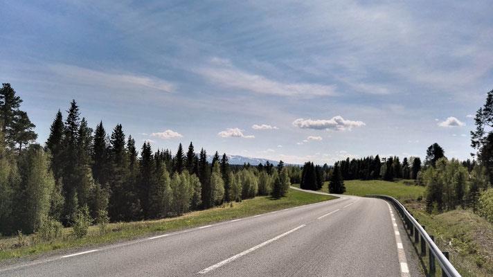 Und wieder mal country road