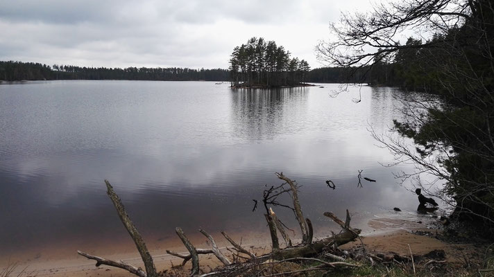 ...Seen und Nadelwald, Seen und Nadelwald, Seen und Nadelwald...