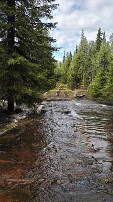 Hinterher ist der Wald völlig überschwemmt