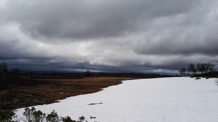 Manchmal noch reichlich Schnee, aber deutlich besser als vor 2 Wochen