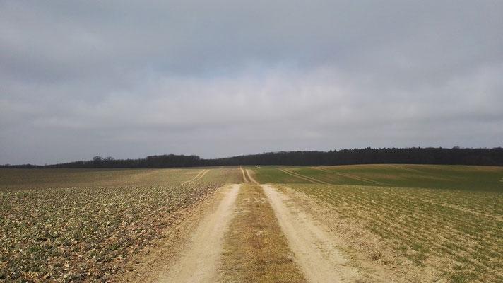 Auf dem Weg nach Malchow