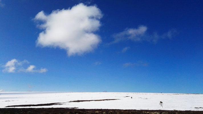 Morgens Schnee soweit das Auge reicht. Doch zum Glück ist der Himmel blau.