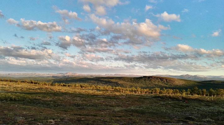 Blick zurück auf den Pieljekaise-Nationalpark - um 23 Uhr!
