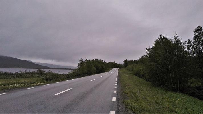 Auf der Schnellstraße nach Tärnaby - zum Glück ist kaum Verkehr