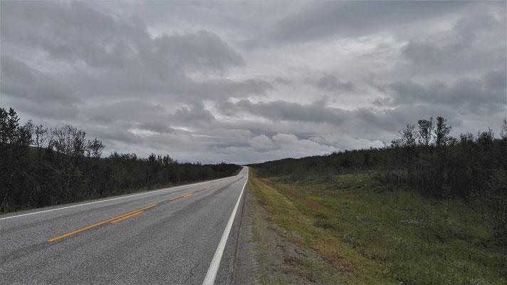 Noch eine Woche dieser Straße folgen, dann bin ich am Nordkap.