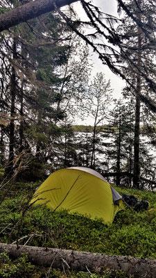 Schlafplatz unter Bäumen