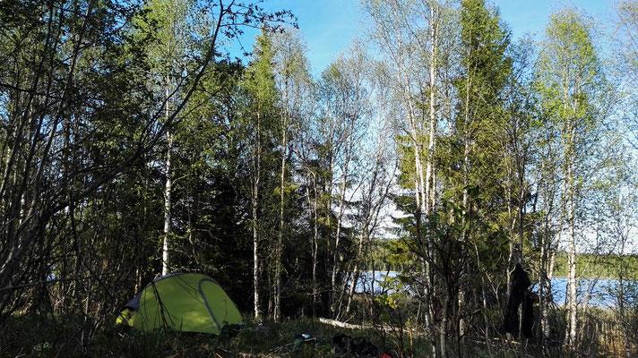 Schlafplatz unter Bäumen am See