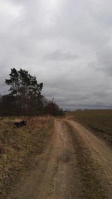 Durch Kälte und Regen in Richtung Güstrow