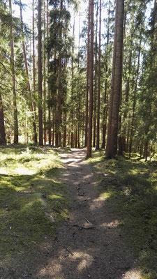 Abstieg vom Isaberg
