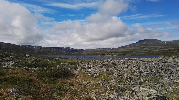 Steinreiche Gegend
