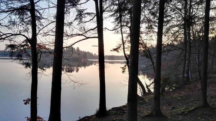 Morgengrauen am Vittsjön