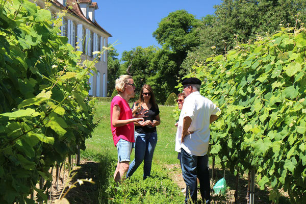 visite chateau crouseilles credit guide bearn pyrenees 2