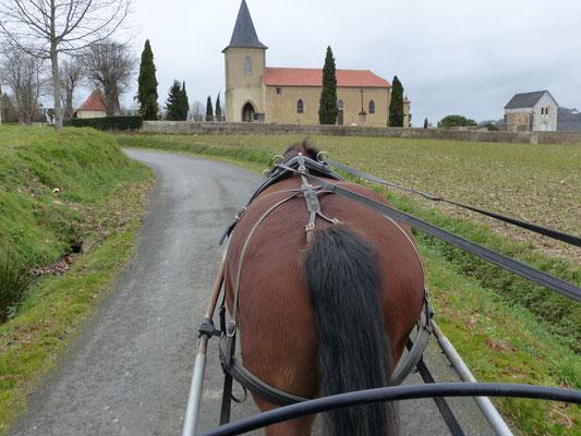 Ferme au Bèth Loc - Bassillon-Vauzé - SMT Nord Béarn