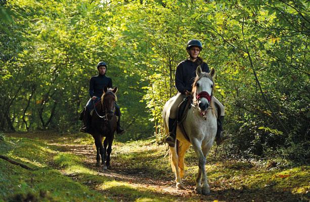 circuit randonnee equestre vic-bilh madiran