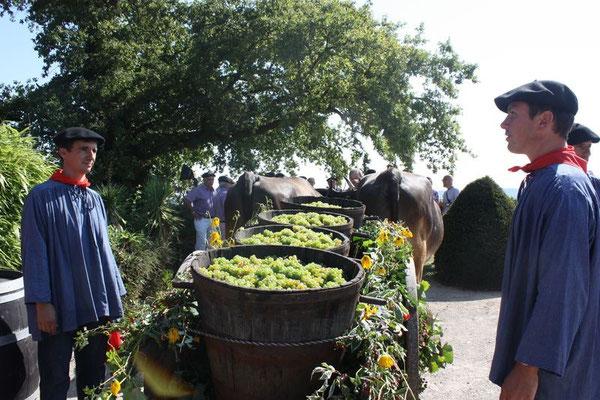 fête du vin tourisme nord bearn Madiran