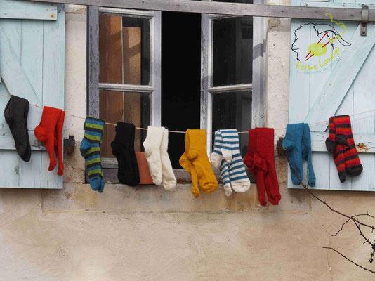 Ferme Laneya - Argelos - crédit photo Ferme Laneya Tourisme Nord Béarn