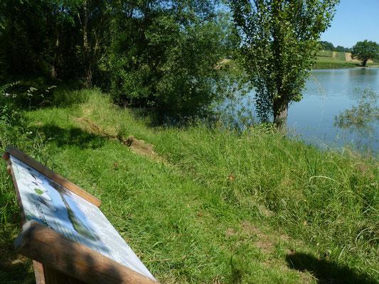 AYDIE promenade joseph peyre credit syndicat tourisme nord bearn madiran lac
