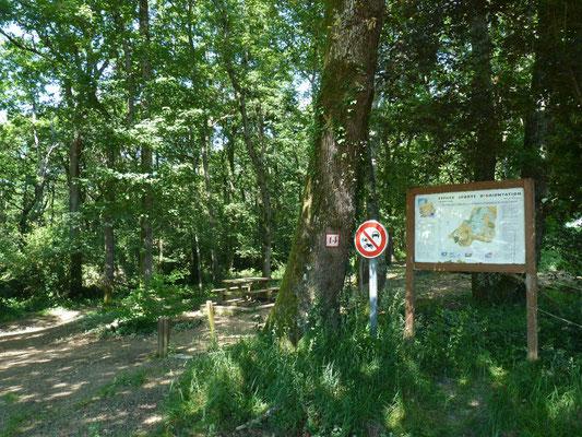 Espace Sports d'Orientation - Sauvagnon - Tourisme Nord Béarn Madiran