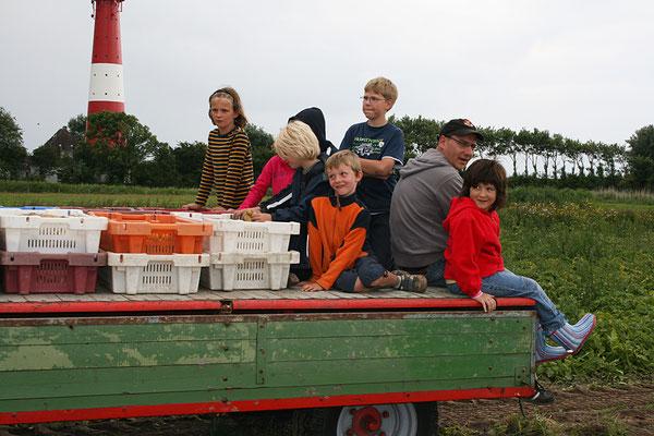 Kinder bei der Kartoffelernte fahren auf dem Kipper mit