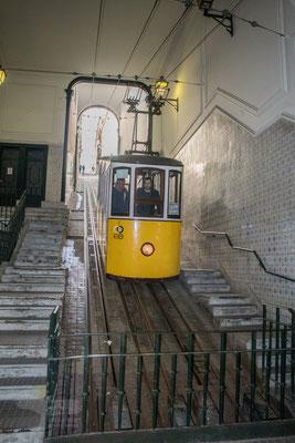 my Lisbon Holidays, Ascensor da Bica