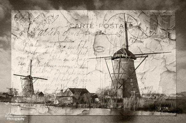 Carte postale de Kinderdijk