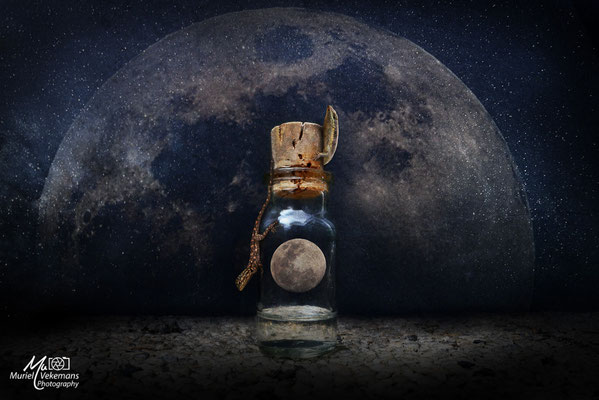 Je te décrocherai la lune
